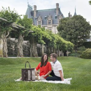 Biltmore collection
