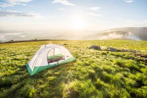 Summer camping in Freedome 2 1/2